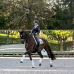 Lehua and stampy extended trot